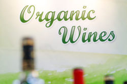 Photo: Bottles with organic wine