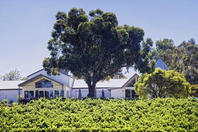 Hay Shed Hill Wines Vineyard Estate