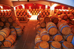 Photo: Edoardo Miroglio - cellar with barrels