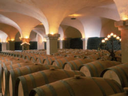Photo: Bulks of wine in cellar