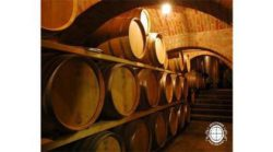Wood barrel cellar of wine-growing estate Krauthaker. Source: Thomas Brandl