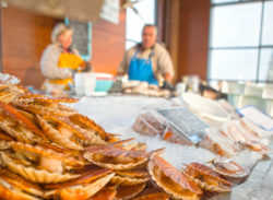 Seafood at market Port-en-Bessin, Source: Matthias Stelzig