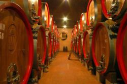 Photo: Wine-Cellar