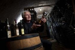 Ivan Enjingi in a wine cellar. Source: Thomas Brandl