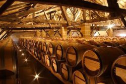 Photo: Wine-Cellar Neipperg