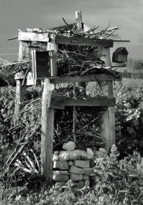 Photo: insect hotel in vineyard