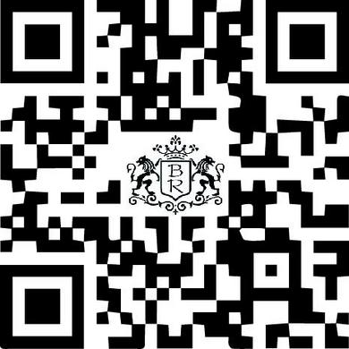 QR Code flash code champagne bernard remy allemant