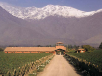 Photo: Valle Limarí is a paradise for extremely mineral-rich Chardonnays and Sauvignon Blancs