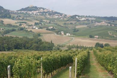 Bertinoro in the Emilia-Romagna