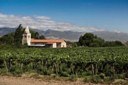 Old church © Wines of Argentina
