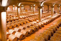 Photo: Tancredi wine cellar