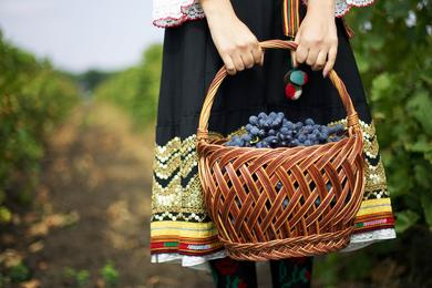 Harvest in Moldova