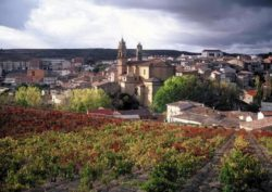 Photo: DOCa Rioja
