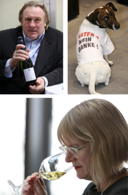 Photo collage: Highlights of ProWein 2009