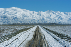 Snowy path Andes © Wines of Argentina